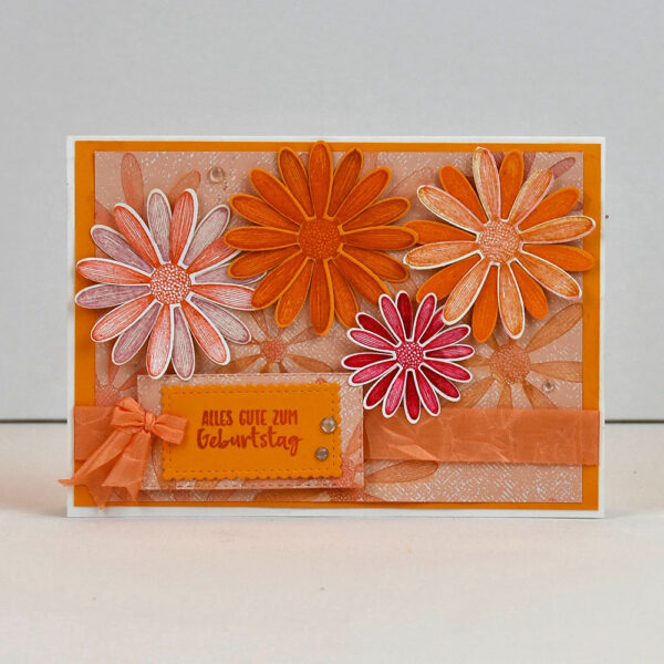 Grüsse zum Geburtstag - Grusskarten